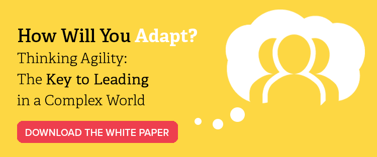 Button to download a Thinking Agility white paper